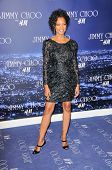 Garcelle Beauvais-Nillon  at the Jimmy Choo For H&M Collection, Private Location, Los Angeles, CA. 1