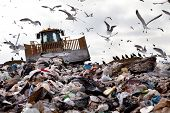 stock photo of trash truck  - Truck working in landfill with birds in the sky - JPG
