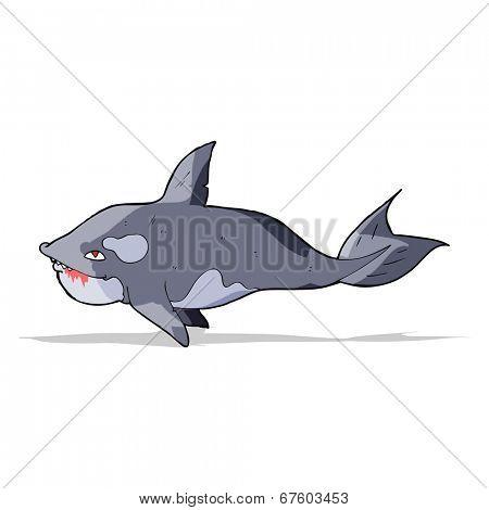 cartoon killer whale