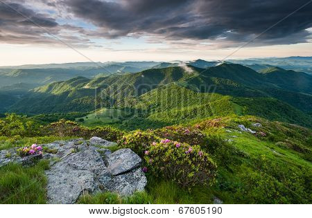 Roan Highlands Southern Appalachian Scenic