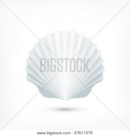Scallop seashell of mollusks icon sign isolated. Vector illustration