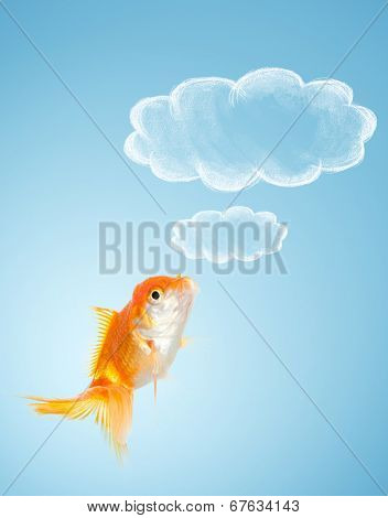 Goldfish thoughts on blue background. Concept of wish fulfillment.