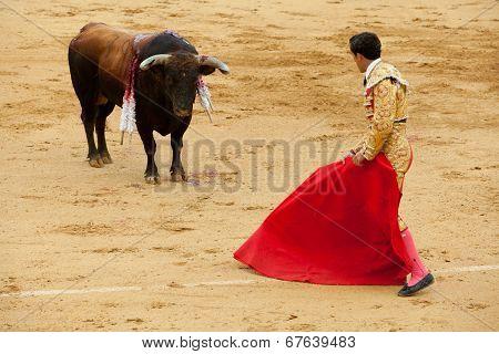 Performing A Bullring