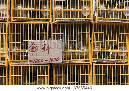 Bird cages, shot at bird street in Hong Kong, Asia. The words in the card is meaning