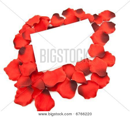 Clean Sheet Of A Paper For The Message Among Petals Of Roses