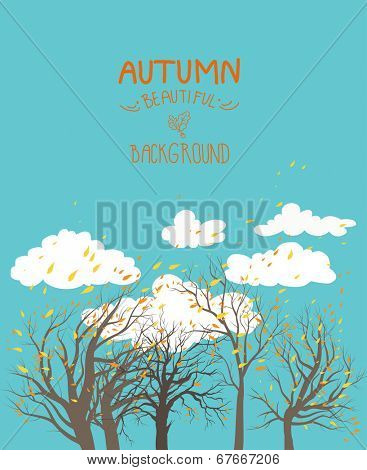 Autumn background with blue sky and trees. Place for text