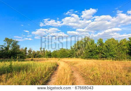 road across steppe in nice day