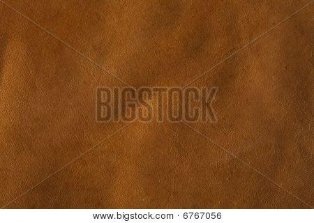 Rawhide Buffalo Leather, Xxl Size Background