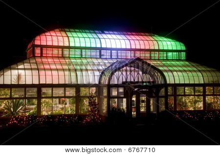 Lit Green House