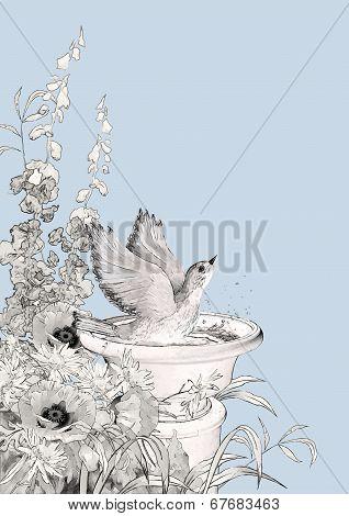Vector Bird Bath Sketch Flowers