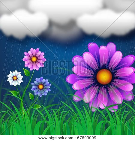 Flowers Background Indicates Clothes Line And Abstract