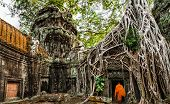 pic of buddhist  - Buddhist monk at Angkor Wat - JPG