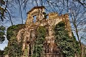 pic of collapse  - facade of an abandoned and collapsed antique mansion covered with ivy - JPG