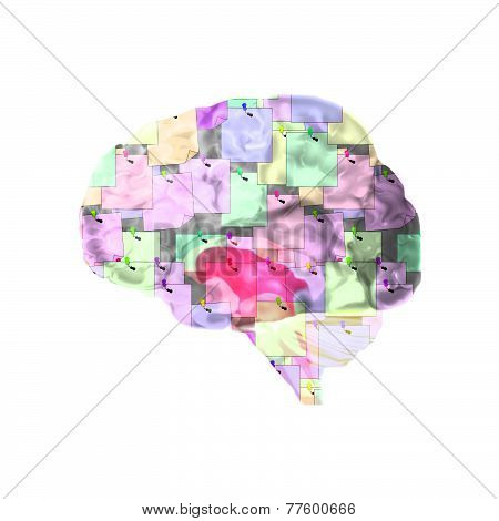 Brain With Notes To Help Memory