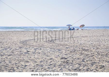 Family On Sandy Beach With Tracks