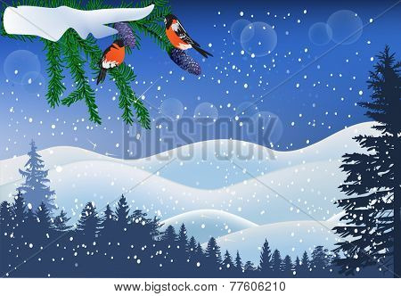 illustration with bullfinches in winter forest
