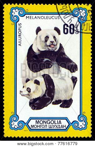 Vintage  Postage Stamp. Female And Cub Pandas.