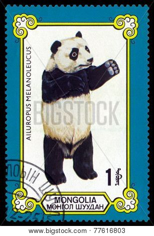 Vintage  Postage Stamp. Male Giant Pandas.