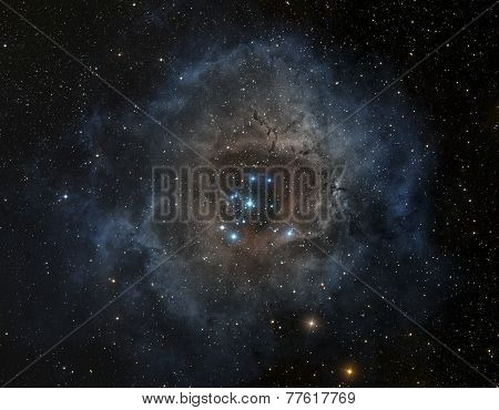 Nebula in deep space