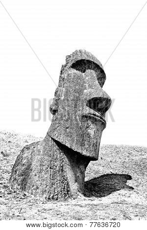 Black And White Moai Head On A Hill In Easter Island