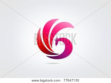 Peacock Logo, Corporate pink bird icon abstract