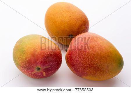 Three Ripe Mangos With Impeccable Skin On White