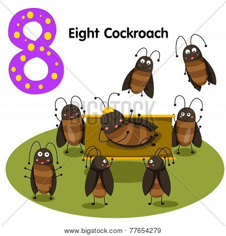 Illustrator of number eight cockroach