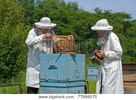 Beekeepers At Hive
