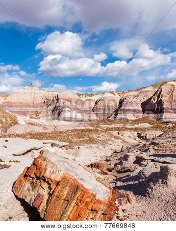 Route 66: Petrified Wood, Blue Mesa, Painted Desert, Petrified Forest National Park, AZ
