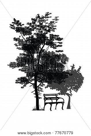 bench under the trees