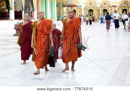 YANGON, MYANMAR - JANUARY 29 :Buddhist monks in the Shwedagon temple Jan 29, 2010, Myanmar. Shwedagon Pagoda temple being the most important Buddhist site for the people of the Union of Myanmar.