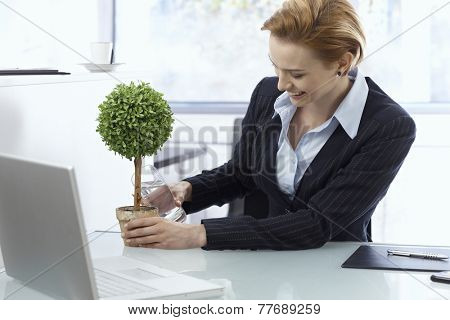 Happy young businesswoman watering potted plant in office