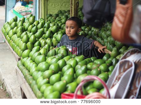 Boy With Avocados At The Market