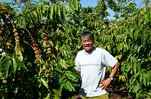 foto of rich soil  - Asian farmer happy with productivity crop Vietnamese man stand at coffee bean plantation cafe is the plant that rich caffeine popular agriculture product at basalt soil highland in Vietnam - JPG