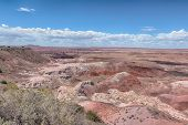 picture of petrified  - Tawa Point, Painted Desert, Petrified Forest National Park, on Route 66, near Holbrook, Arizona.