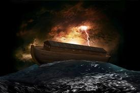image of noah  - Noah - JPG