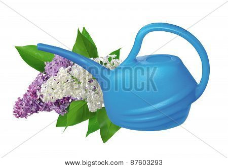 Plastic Watering Can And Lilac Isolated On White