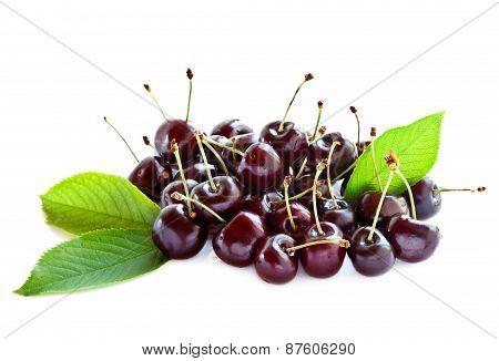 Black ripe cherries