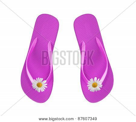 Pink Beach Shoes With Chamomiles Isolated On White