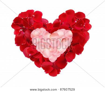 Beautiful Hearts Of Red And Pink Rose Petals Isolated On White