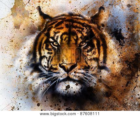 Tiger collage on color abstract background rust structure wildlife animals eye contact, tiger collage on color abstract background rust structure wildlife animals eye contact.