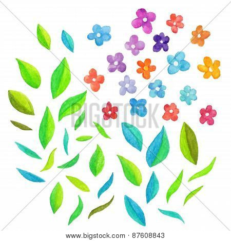 Watercolor vector floral elements.