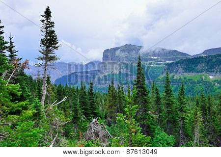 Mountains In Clouds And High Alpine Conifer Forest In Glacier National Park