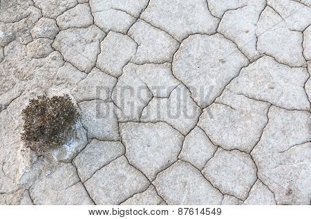 Parched Ground Texture