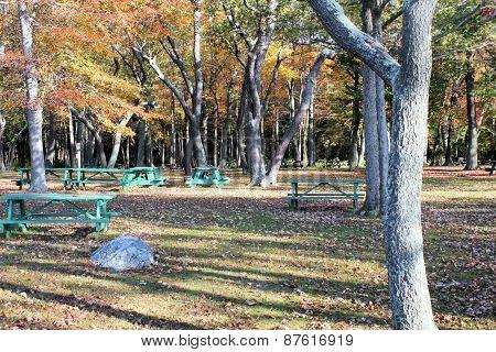 Picnic Park