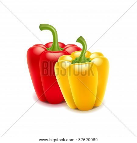 Sweet Pepper Isolated On White Vector