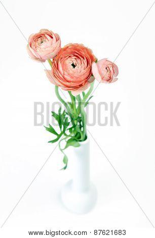Beautiful little bouquet Ranunculus