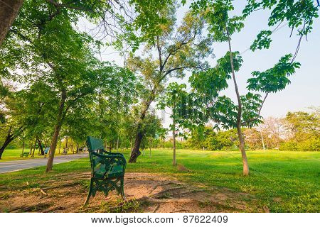 Park Bench In The Sunset Light