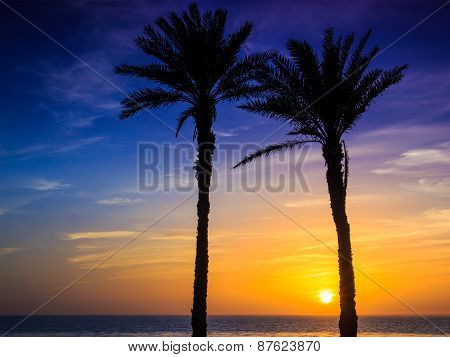 Sunset In Agadir, Morocco