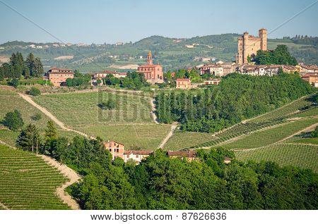 Serralunga D'alba, Langhe, Italy